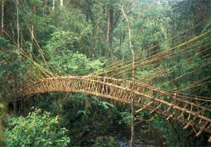 Mountain-Bridge-Papua-New-Guinea-Highlands