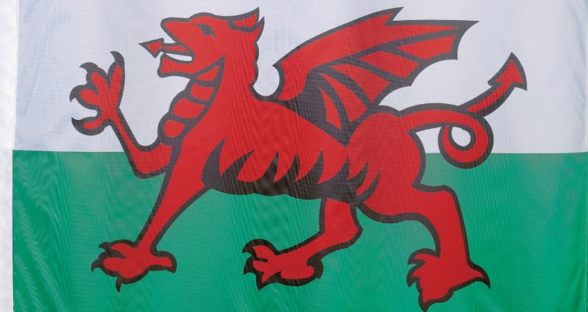 Welsh Website Translation