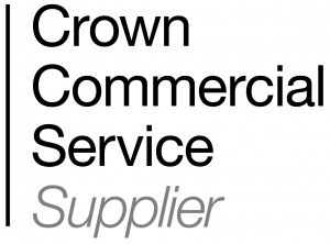 CCS translation Supplier