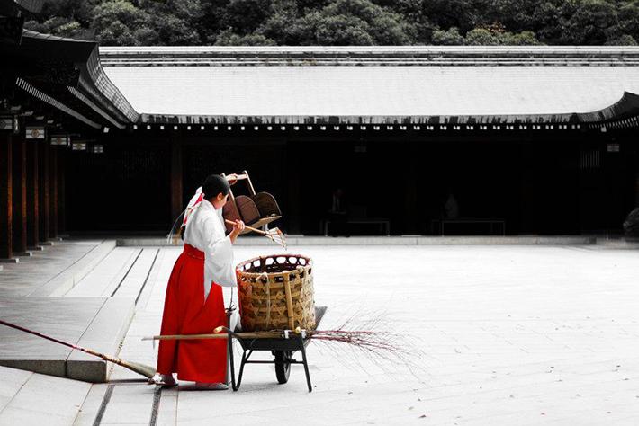 The Meiji Shrine, Shibuya