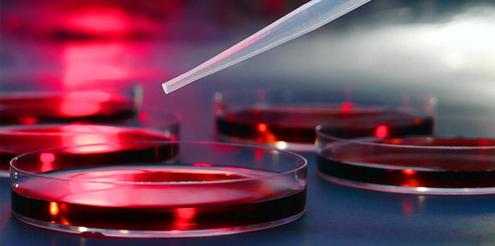 Translating Medical Trials
