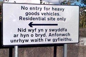 Swansea Council translation fail