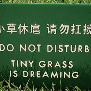 Signs we did not translate