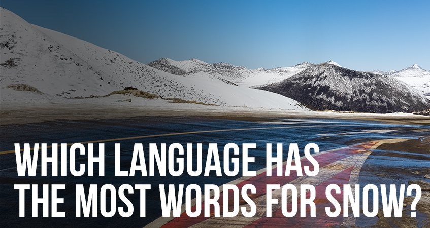 Which Language Has the Most Words for Snow