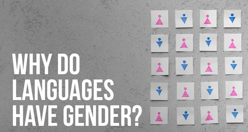 Why Do Languages Have Gender?