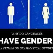 languages gender