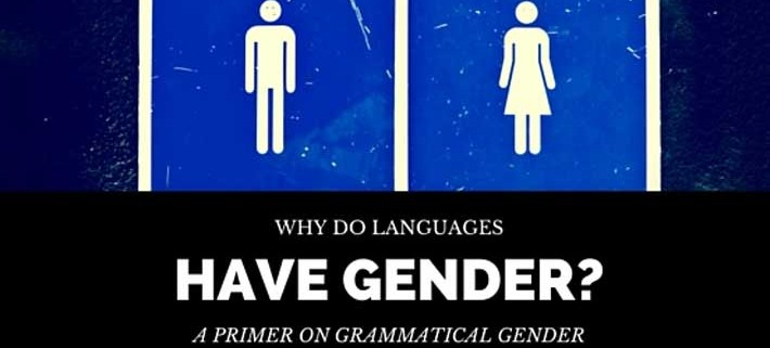 the language and the gender The third dimension of gender is gender expression, which is the way we show our gender to the world around us (through such things as clothing, hairstyles, and mannerisms, to name a few) practically everything is assigned a gender—toys, colors, clothes, and activities are some of the more obvious examples.