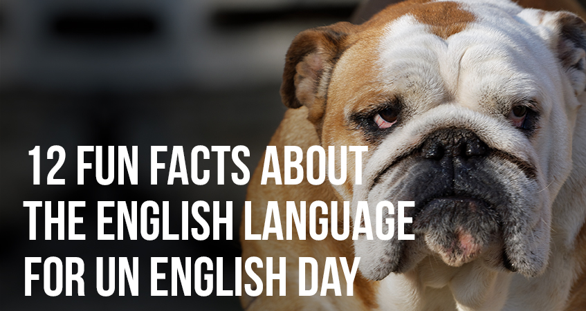 12 Fun Facts About the English Language for UN English Day