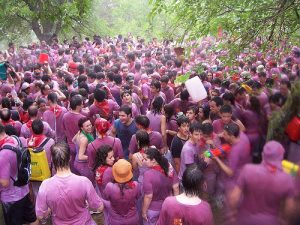 summer festivals 2016 wine fight
