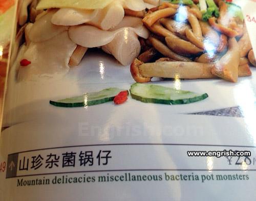 bacteria-pot-monsters