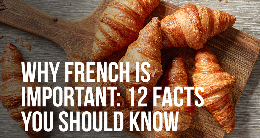 Why French is Important 12 Facts You Should Know