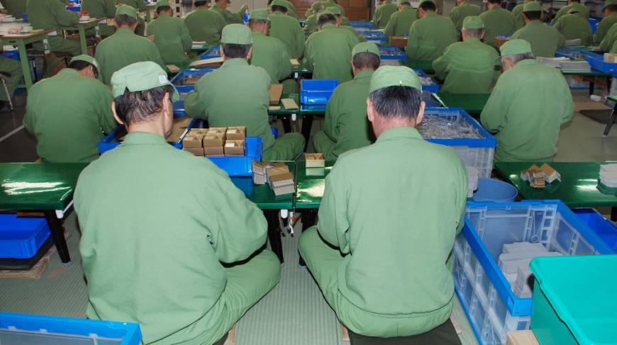 Translation services in Japanese Prisons