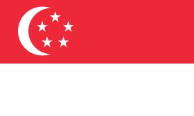 Singapore Translation Export Guide